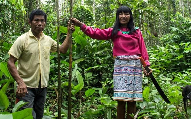 Hombres y las mujeres a menudo participan de diferente forma en las decisiones sobre el bosque. Foto Juan Carlos Huayllapuma, CIFOR.