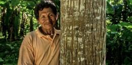 Restauración de bosques en Latinoamérica: A mayor escala, más desafíos