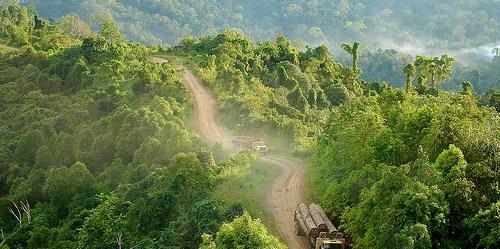 Truk pengangkut kayu di Gunung Lumut, Kalimantan Timur. perbincangan iklim umumnya dibicarakan agak terisolasi dari pembangunan secara luas.