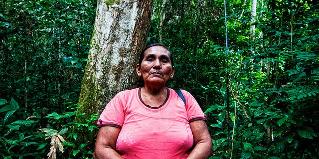 Forests in the Peruvian Amazon stand for far more than just tree cover for these indigenous communities.   Marco Simola  CIFOR