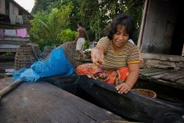 Seorang ibu di desa Pengerak memberi pakan ikan Toman. Peran perempuan vital dalam menjaga keseimbangan lingkungan.