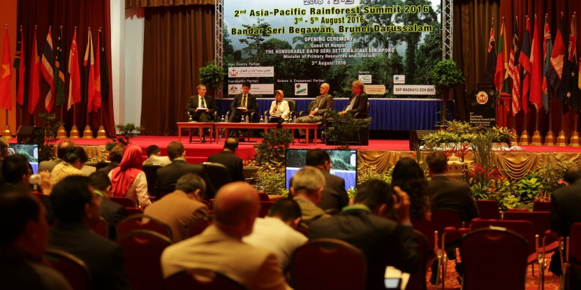 More than 300 participants attended the regional rainforest summit held at the International Convention Centre in Brunei Darussalam.