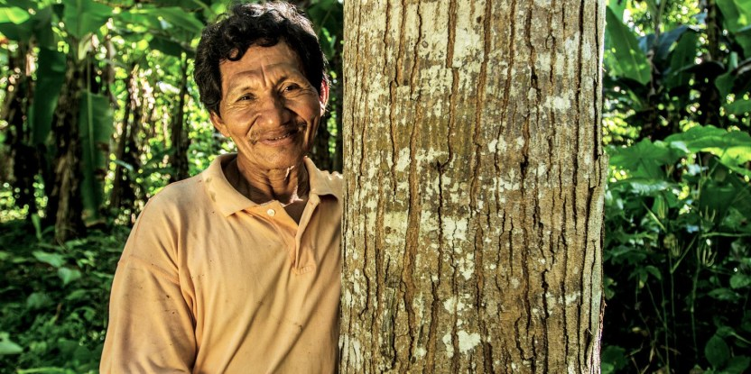 El aumento de compromisos de las empresas a fin de eliminar la deforestación de las cadenas de abastecimiento se debe abordar en conjunto con la precaria situación de los pequeños productores.
