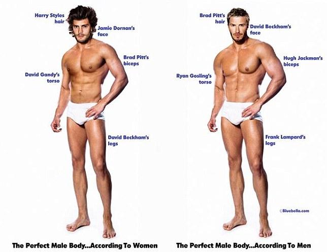 metodologie avere membro maschile pi� grande