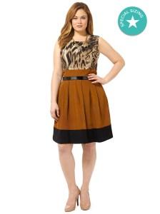 abs-animal-print-color-blocked-dress