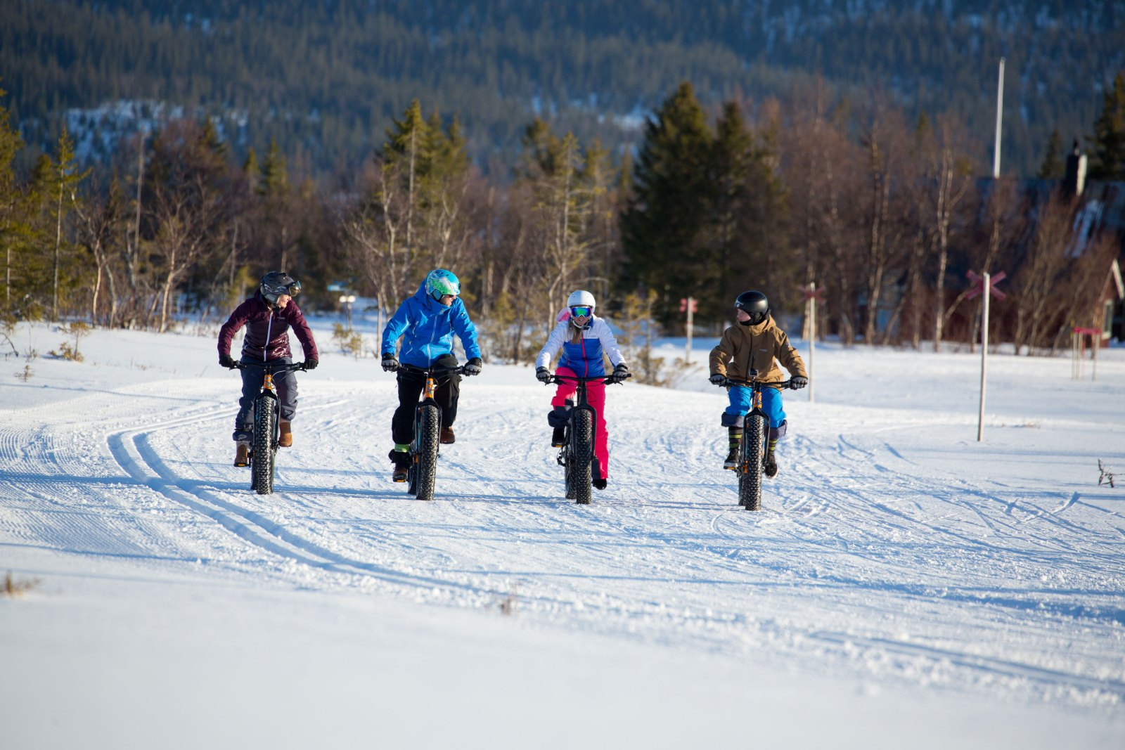 Group of friends riding fat bikes.