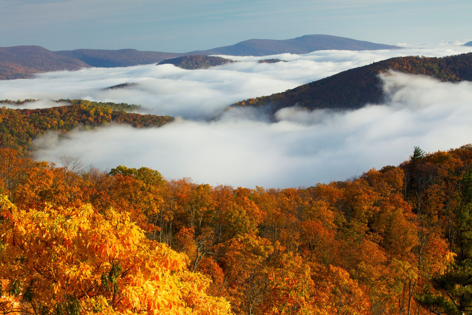 3 must dos at shenandoah national park columbia blog for Shenandoah national park fishing