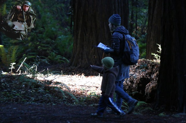 In search of redwoods and film history in the Owen Cheatham grove.