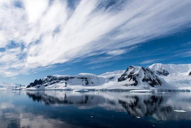 BBC Earth Antarctica