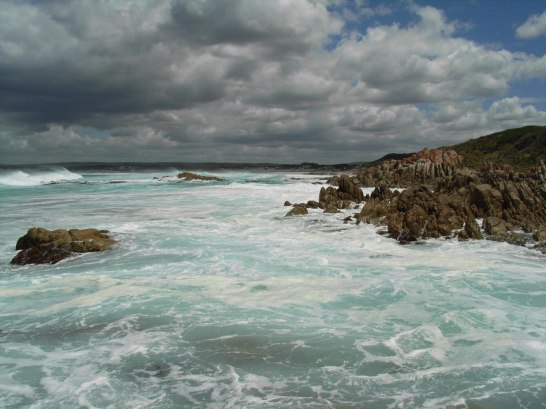 The Tasman Sea is rapidly warming. Image: Elvira Poloczanska.