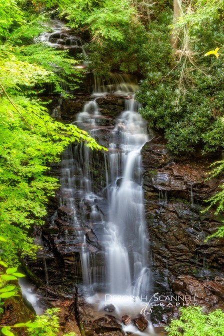 Soco Falls Summertime