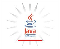 What you should see when Java runs