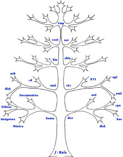 arbol directorios