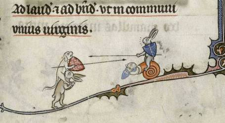 jousting-rabbit