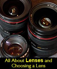 Canon Nikon Lens choosing