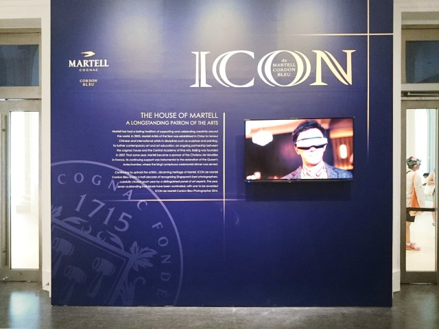 The National Museum Icon De Martell 2014