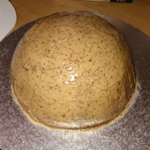 chocolate cake base shaped into dome then covered in coffee frosting