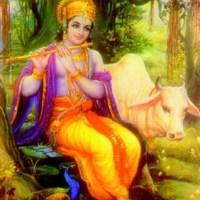 Om Namo Bhagvate Vasudevaya Namah