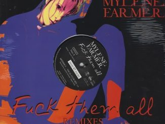 """F**k Them All Remixes -  2005 French-only 3-track 12"""" vinyl single"""