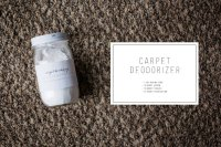DIY Carpet Deodorizer
