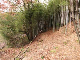 20121214_002.jpg