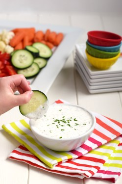 Staggering Homemade Greek Yogurt Ranch Dip Homemade Greek Yogurt Ranch Dip Feel Blog Low Calorie Chips Salsa Low Calorie Chips Recipe