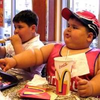 A Teoria McDonalds