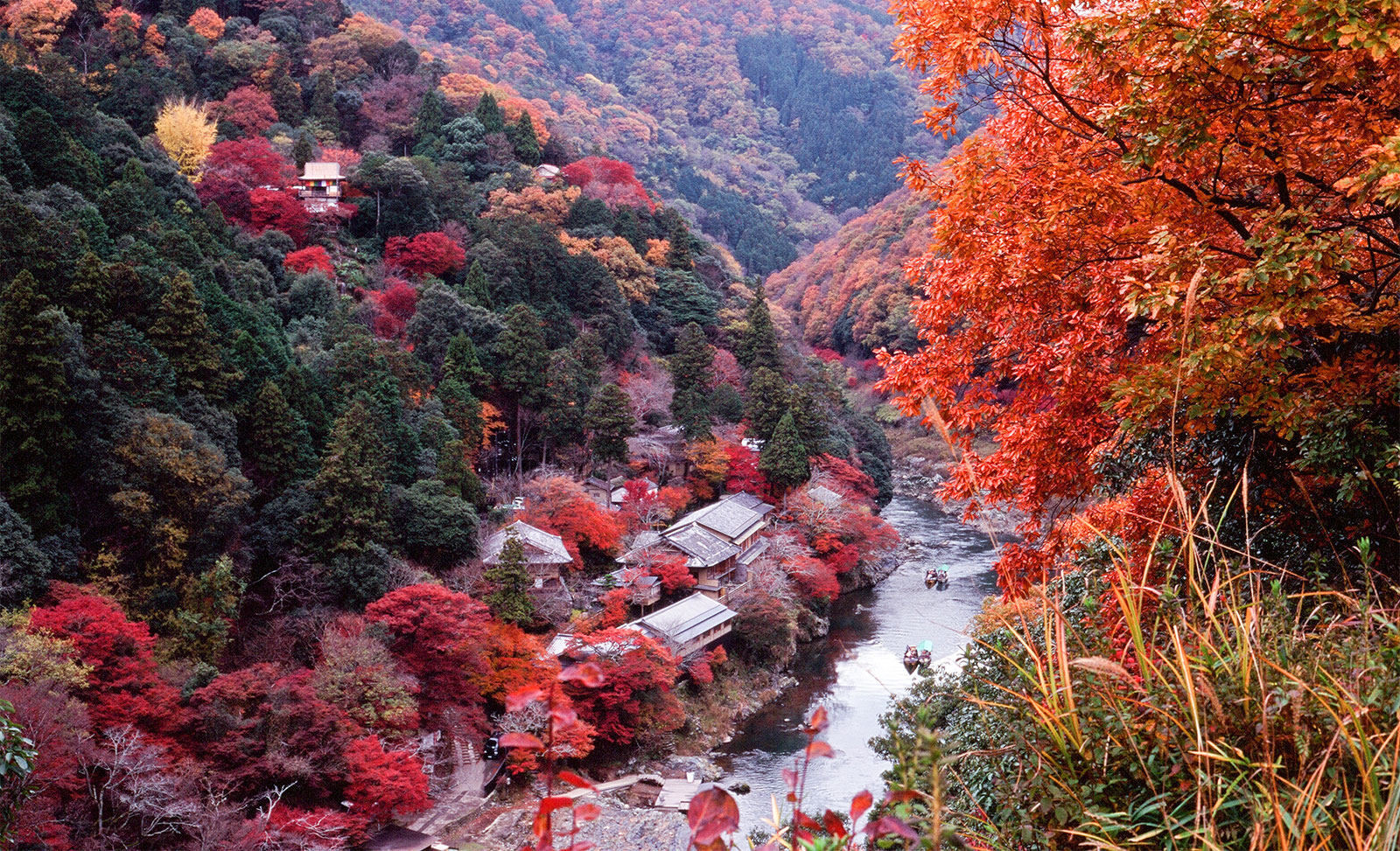 Late Fall Wallpaper Entranced By The Autumn Colors Of Kyoto