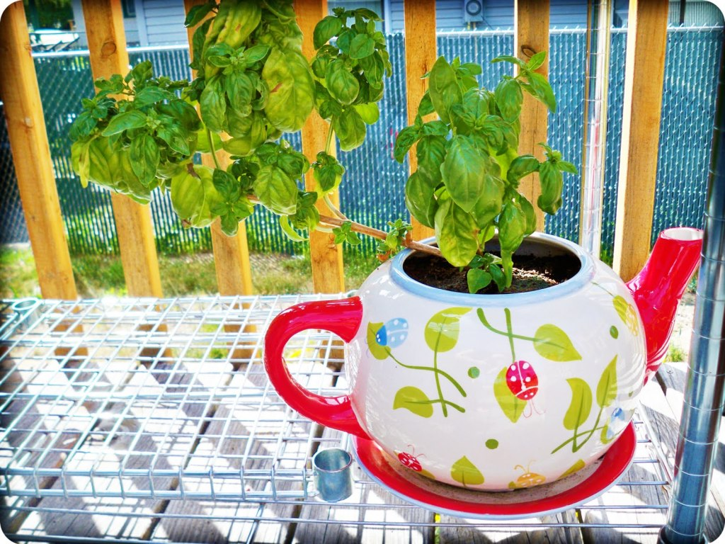 Large Tea Cup Planter 20 Imaginative Recycled Planter Ideas Garden Lovers Club