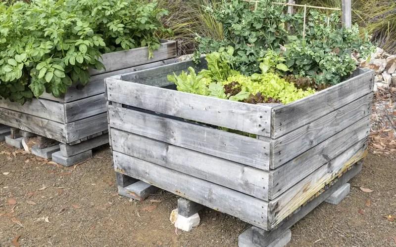 15 Raised Wooden Garden Bed Designs Garden Lovers Club