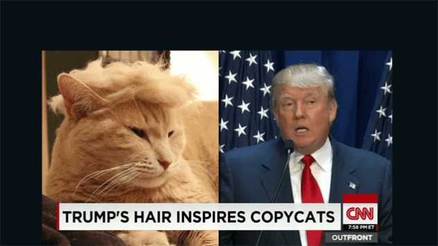 Is Peter Thiel suing Gawker over Donald Trump's hair?