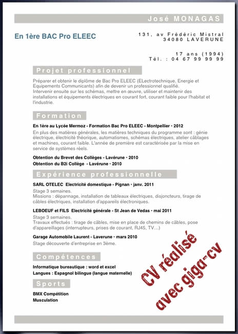 cv stage seconde bac pro