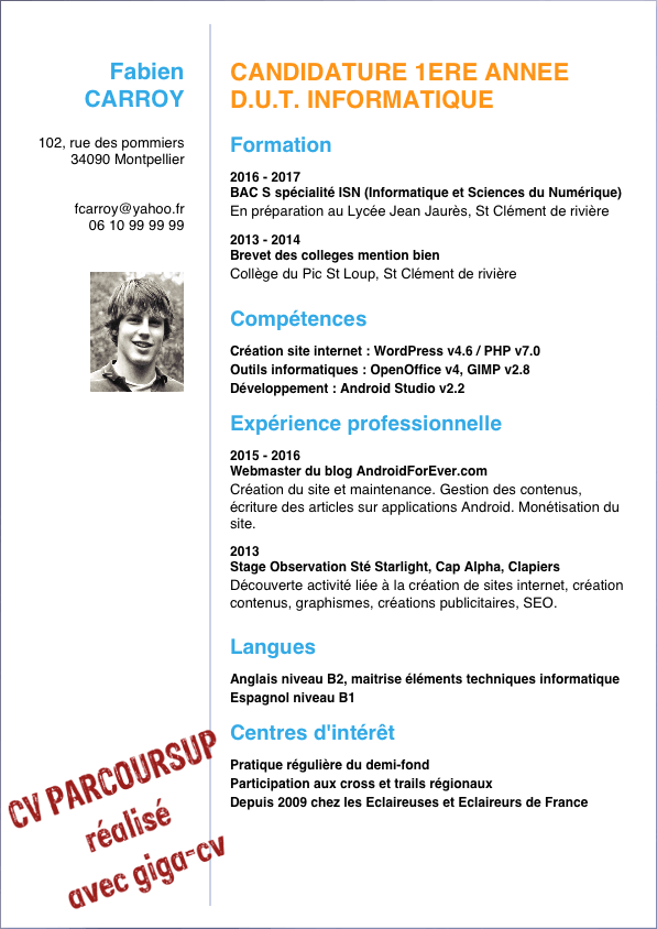 exemple de cv avec competences internet