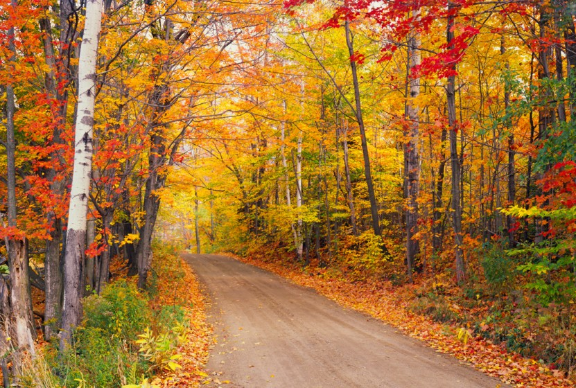 Michigan Fall Colors Wallpaper 7 Best Fall Foliage Trips Globus Blog