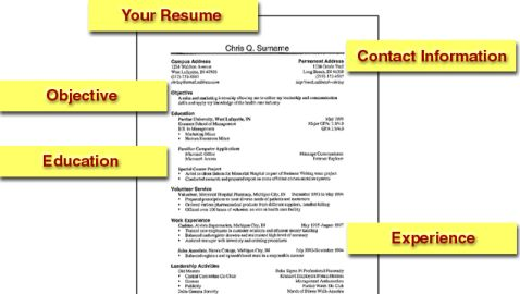 Top Professional Resume Templates for Today\u0027s Business Professional