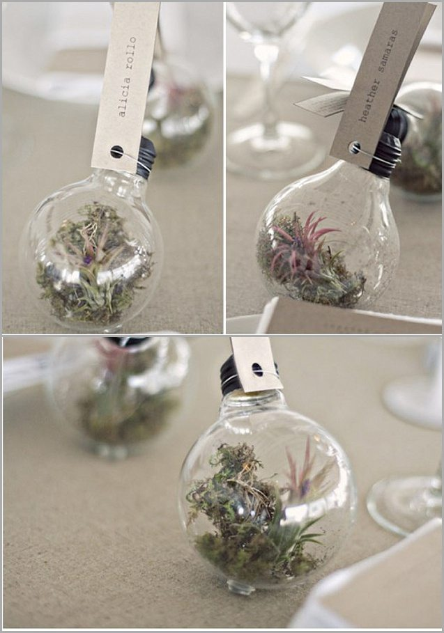 diy des marque place nature fa on terrarium happy chantilly. Black Bedroom Furniture Sets. Home Design Ideas
