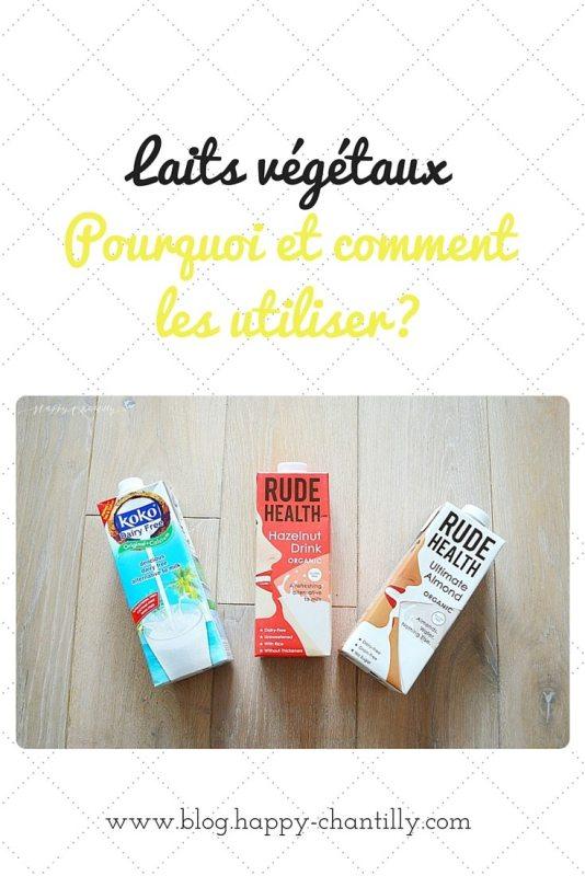 les-laits-vegetaux-pourquoi-et-comment-les-consommer