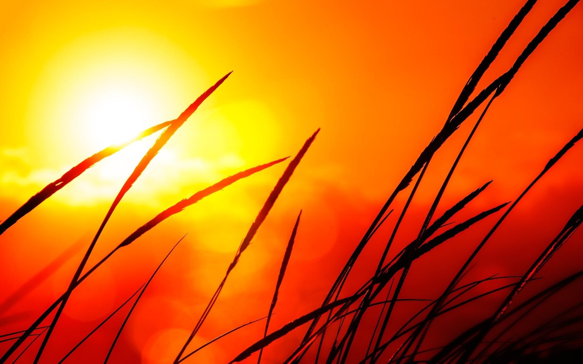 Hd Wallpaper Download Website 12 Pretty Hd Sunlight Wallpapers