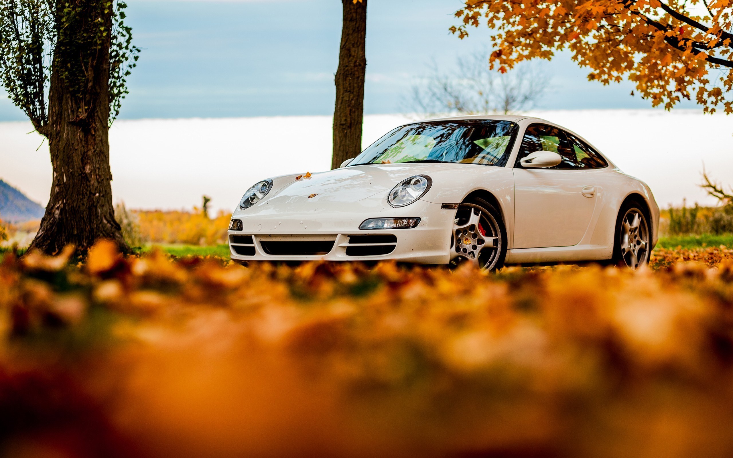 Orange Fall Wallpaper 15 Excellent Hd Porsche Wallpapers