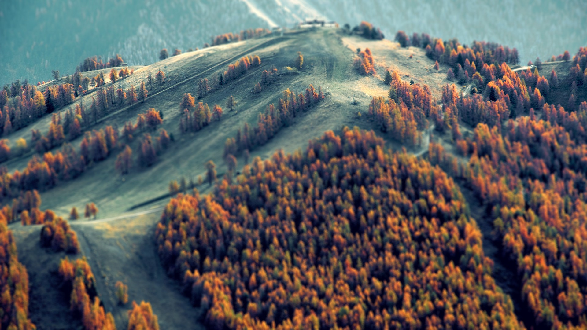Fall Wallpaper Hd 1920x1080 29 Hd Tilt Shift Photography Wallpapers
