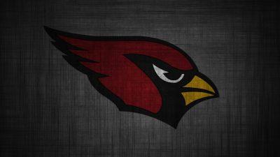 11 HD Arizona Cardinals Wallpapers - HDWallSource.com