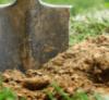 What Causes Disease - Shovel