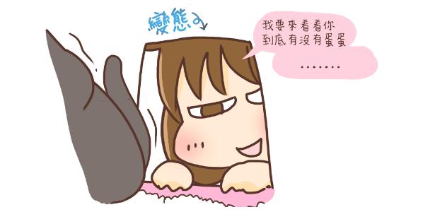 養貓日記-09