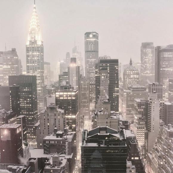 Icing Sugar, NYC, Snow Day, NYC Photography, Vivienne Gucwa