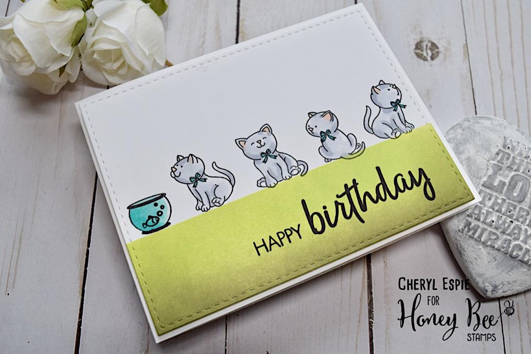 Happy Birthday Kitties