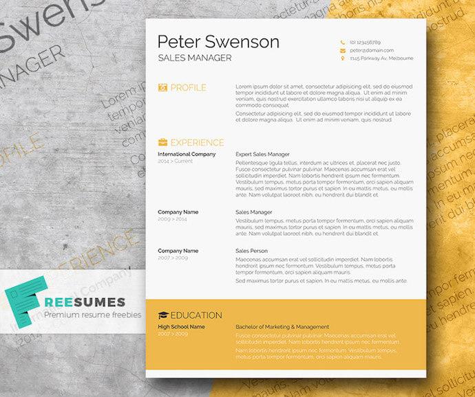 flashy resume templates free