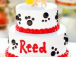 Puppy Dog Birthday Party Top Party Ideas