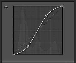 Adobe Lightroom 4 - Tone-Curve Bug