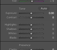 New tone controls in Adobe Lightroom 4