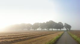 Autumn on the Island of Funen, Denmark - ©Ian Mylam